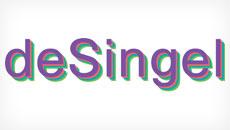 deSingel - Salesforce foundation