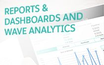 E-Book: Reports & Dashboards for Wave Analytics