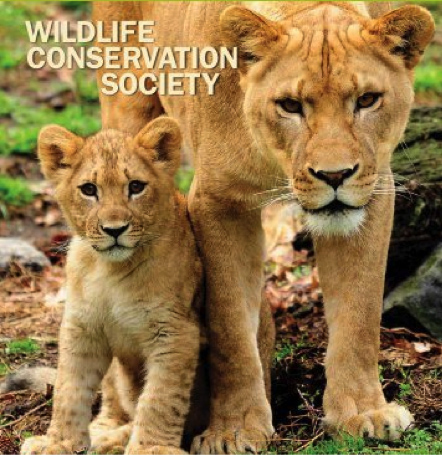 Wildlife Conservation Society on Salesforce