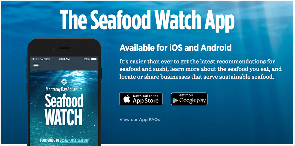 The Seafood Watch App