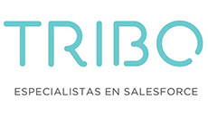 Proyecto Tribo
