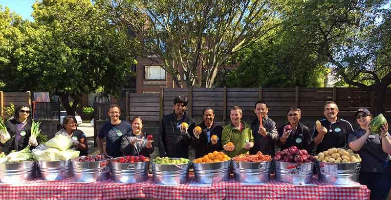 San Francisco Marin Food Bank And Corporate Volunteering