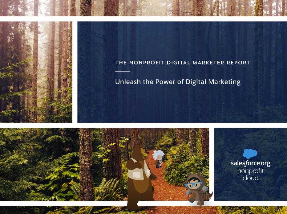Nonprofit Digital Marketer Report