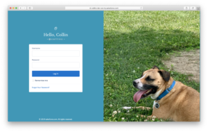 A sample customized login page with My Domain enabled