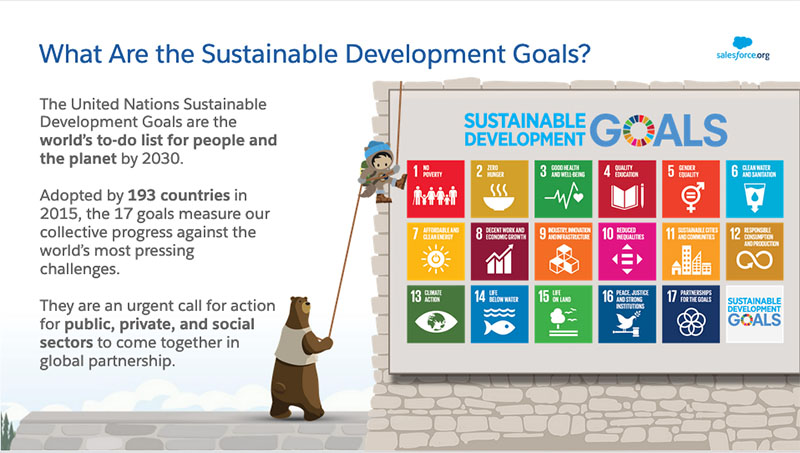 SDGs: What Are They?