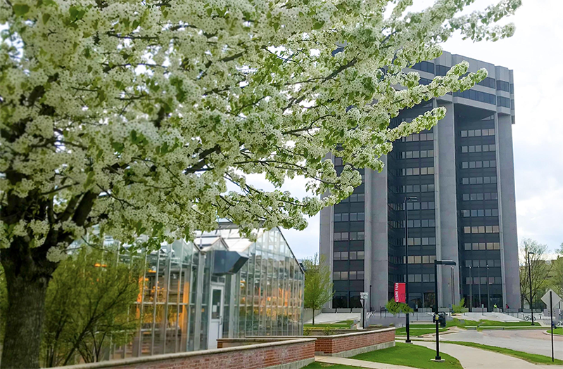 The Wisconsin Alumni Research Foundation (WARF) building