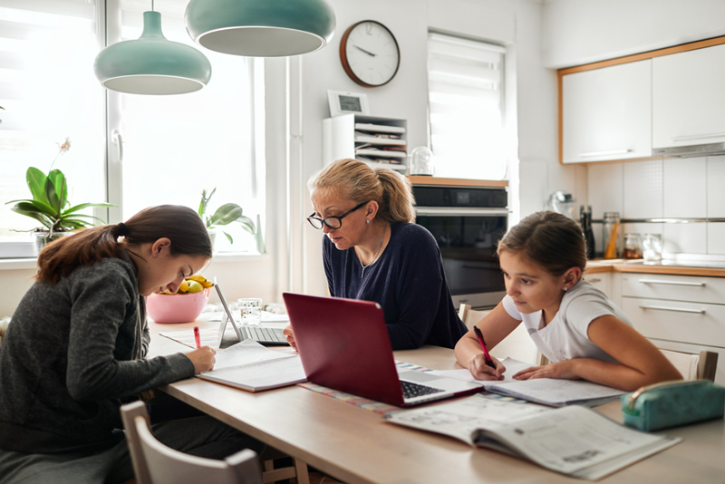 Work and School From Home During Crisis