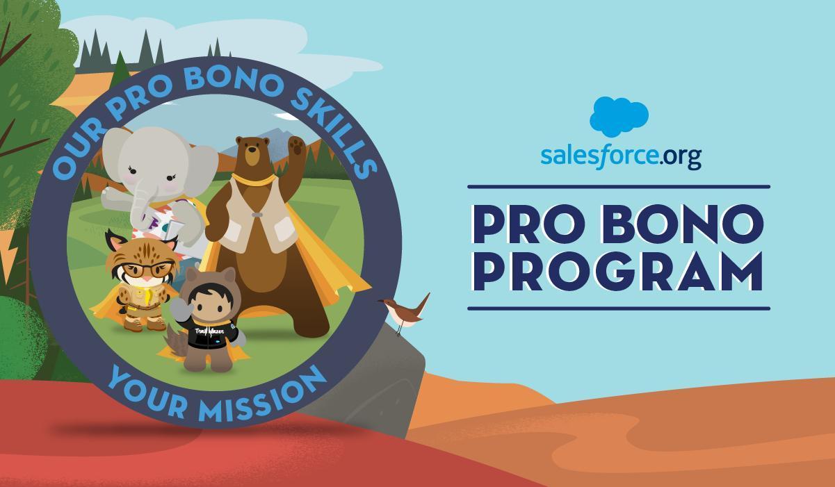 Salesoforce.org Pro Bono Program