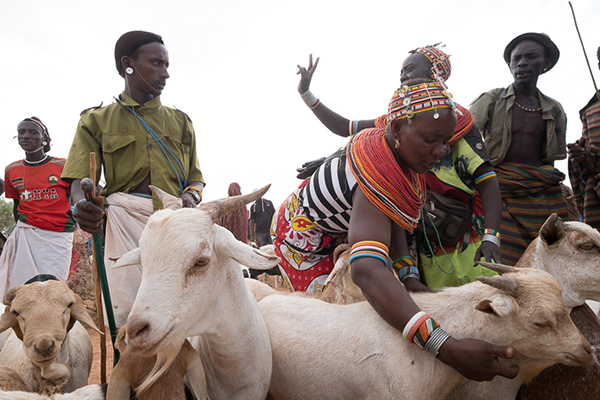Today, 40% of all livestock traders in Northern Kenya are women.