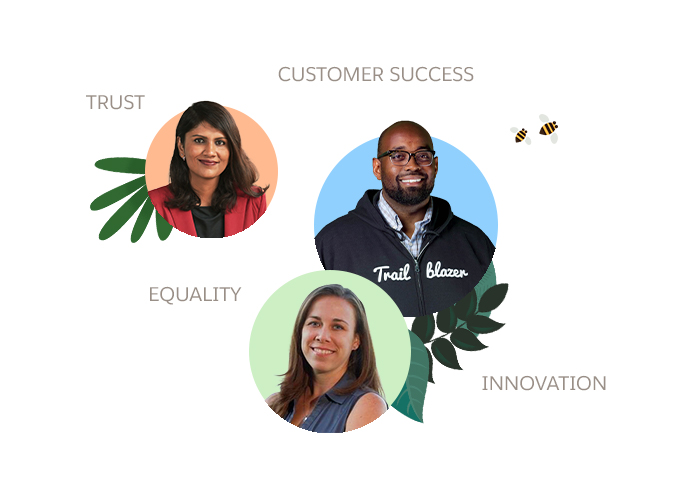 Salesforce values