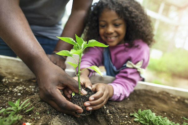 "Child planting flowers with parent"" width=""600"" height=""400"" class="