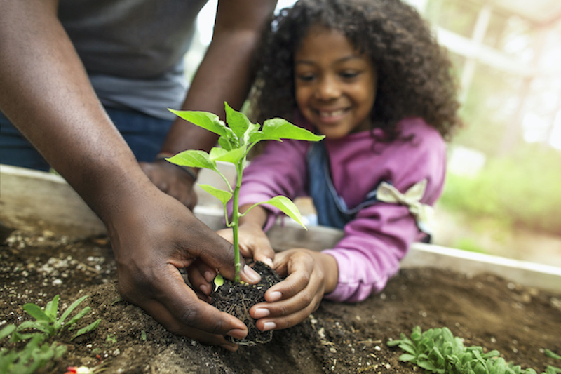 Child planting flowers with parent