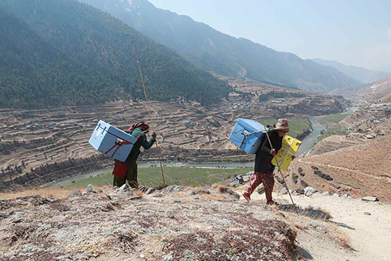 People carrying vaccines up a mountain