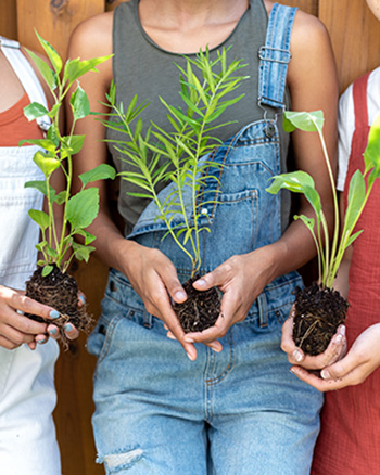 People holding unpotted plants