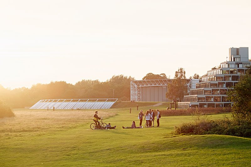 Students meeting up on the UEA campus during sunset.